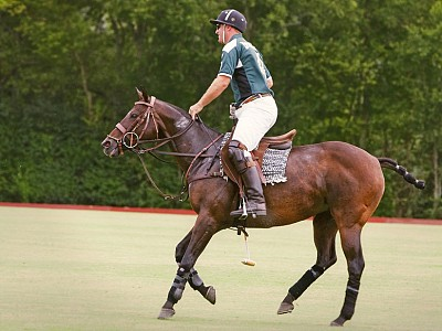 Chattanooga Attractions Polo